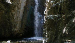Découvrir la flore et la faune de Chypre!